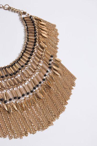 Collar-Crested-Rapsodia